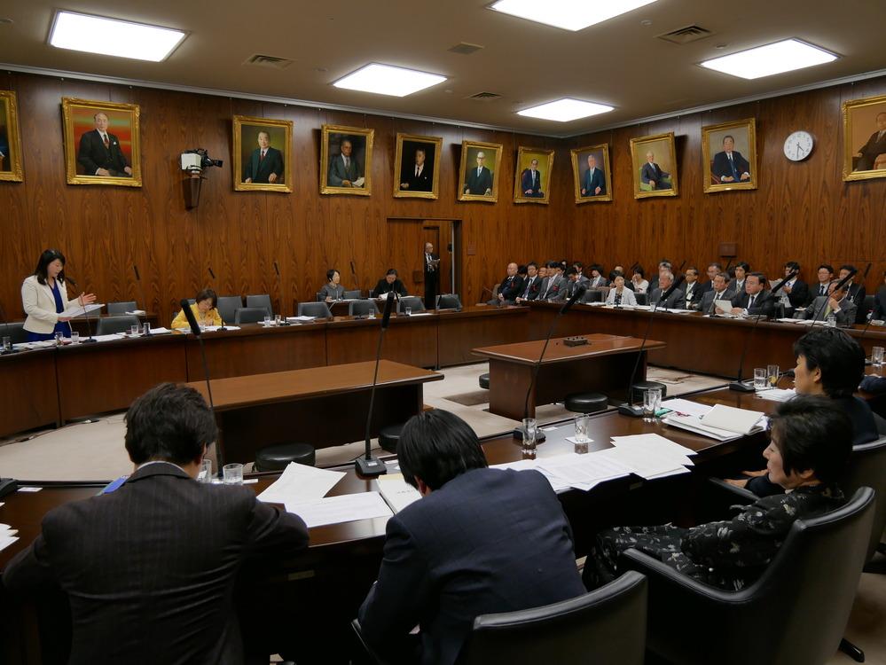 内閣委員会 各大臣所信に対する質疑