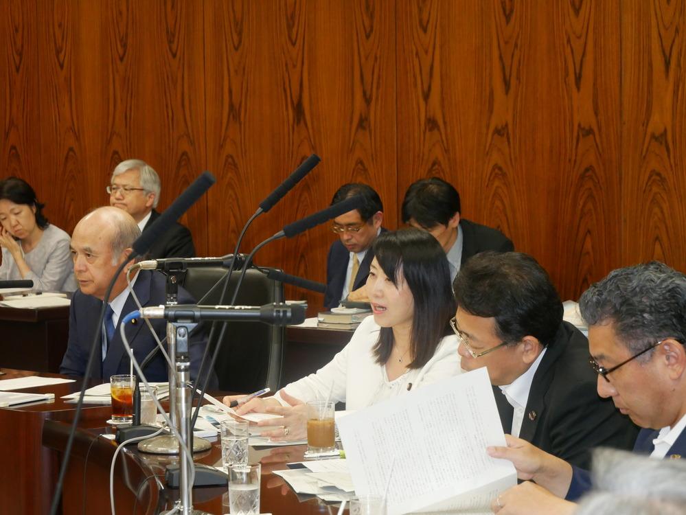 内閣委員会 参考人質疑