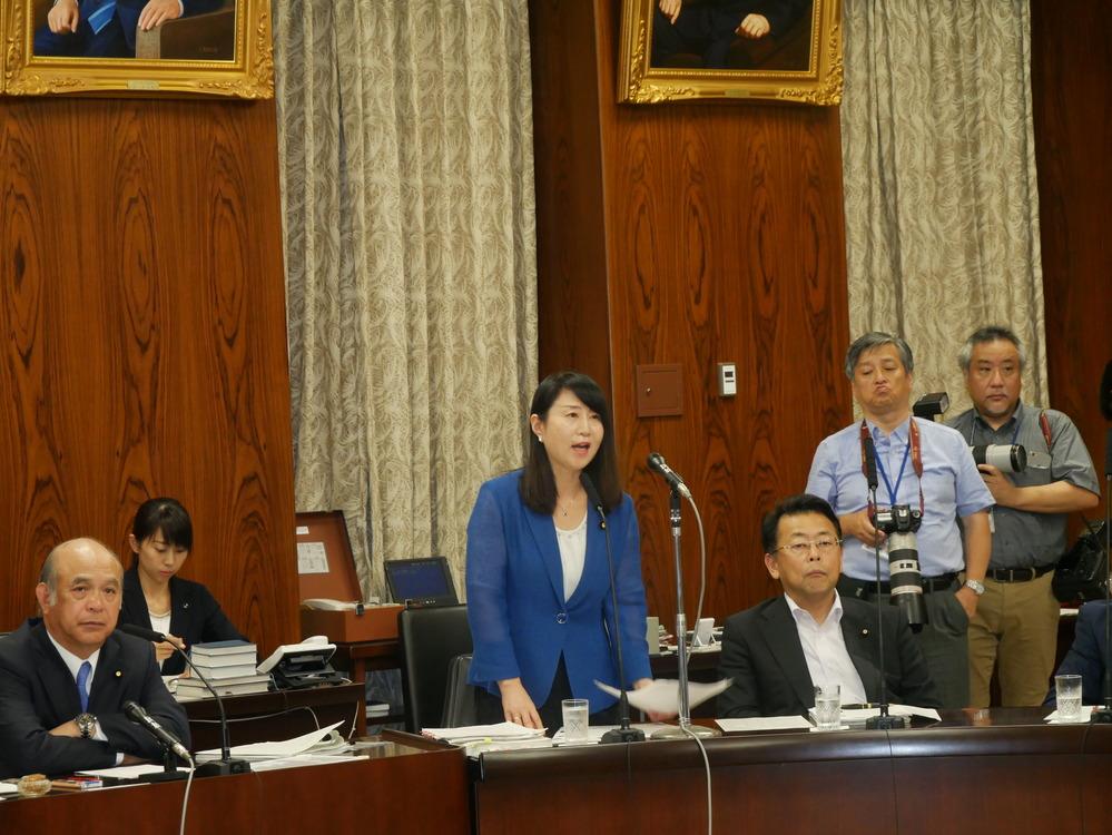内閣委員会 総理に対する質疑