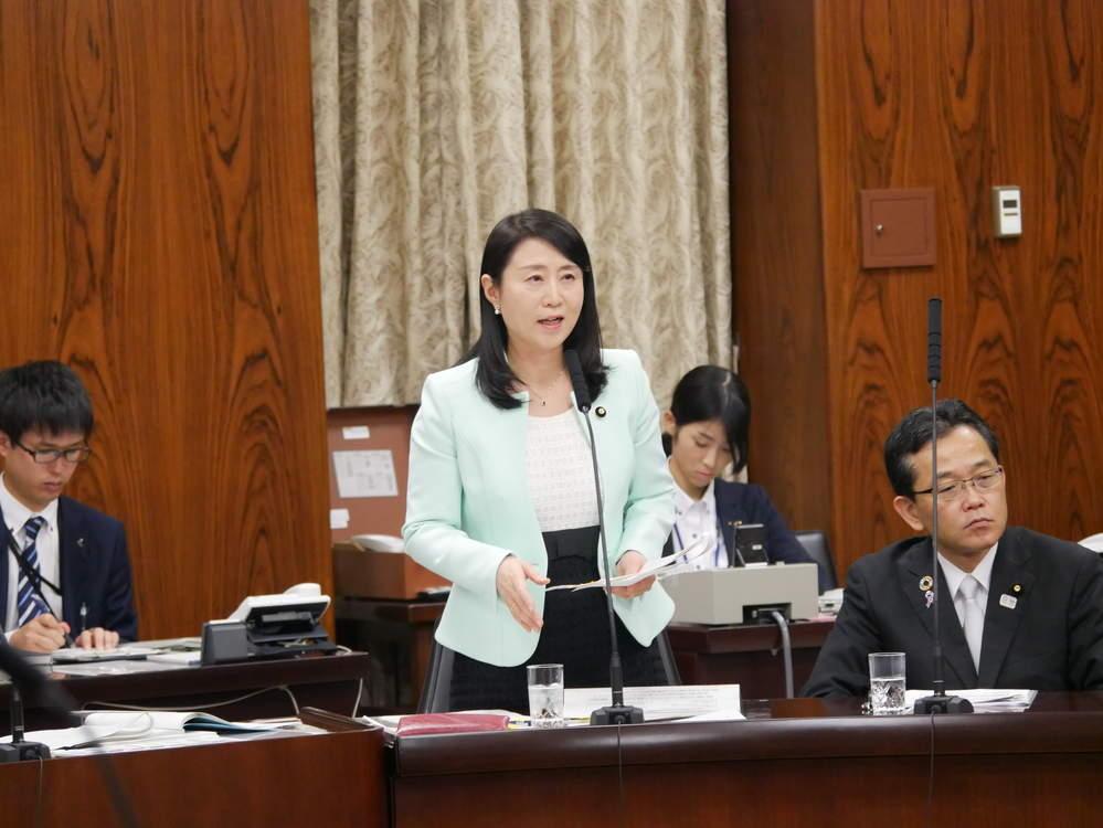 内閣委員会「給与法改正案」審議