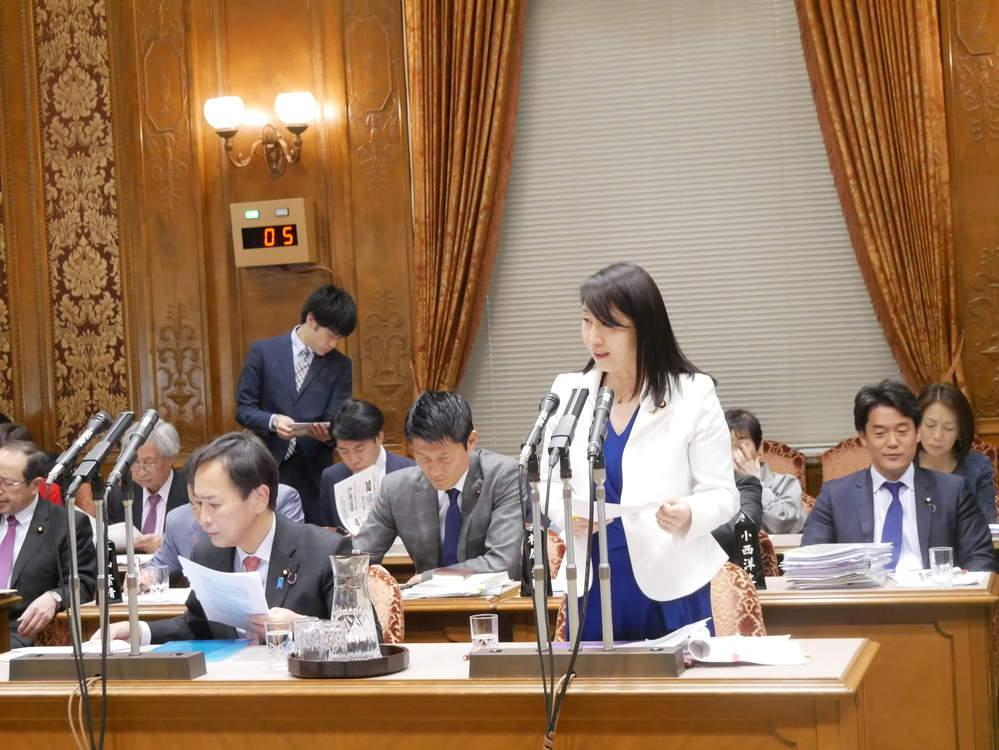 予算委員会での質疑、国会見学対応など