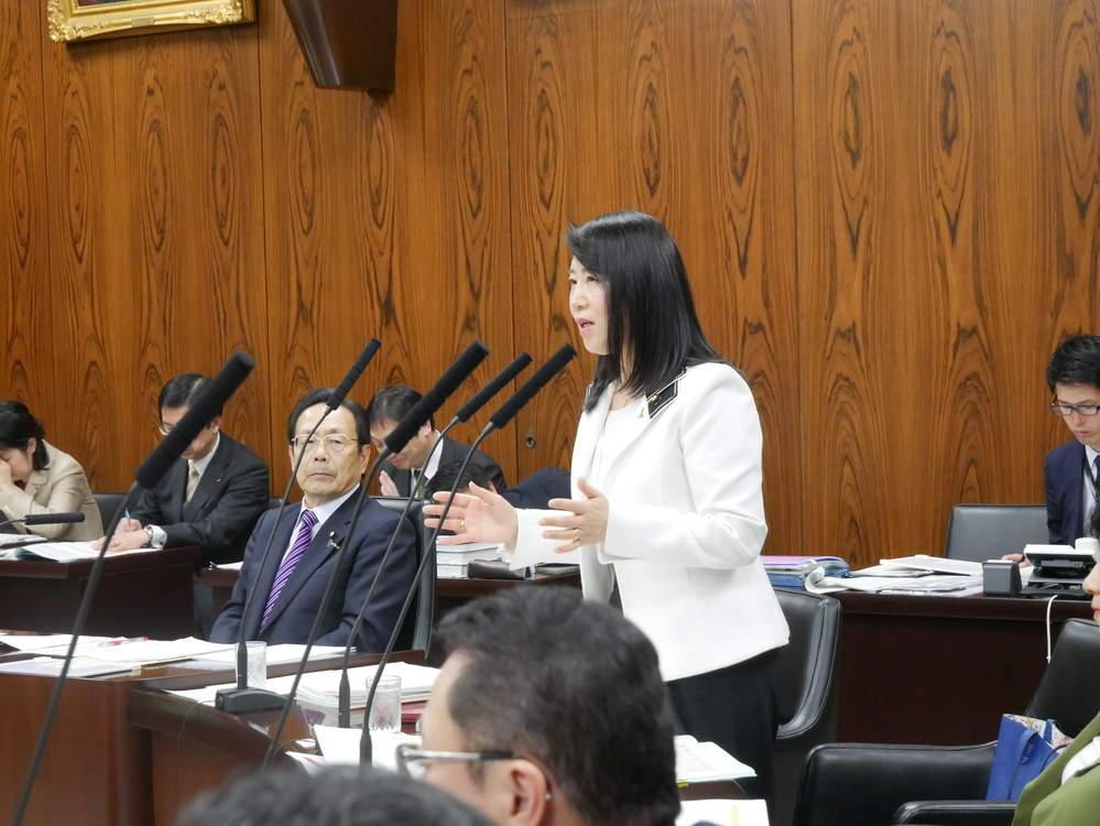 内閣委員会「警察法改正案」の審議