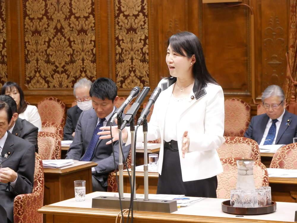 東日本大震災復興特別委員会 大臣所信に対する質疑