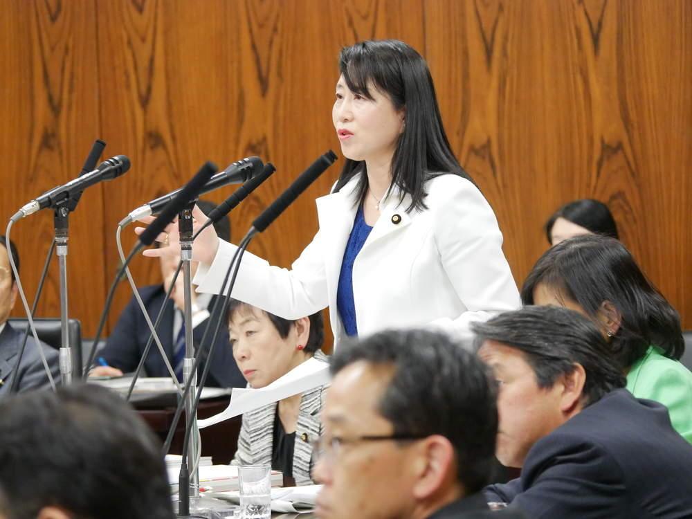 内閣委員会「子ども・子育て支援法改正案」の質疑