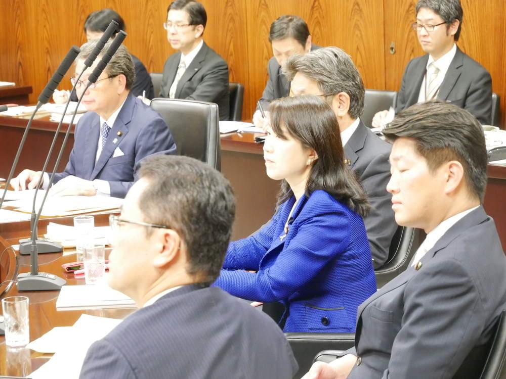 内閣委員会 大臣所信の聴取