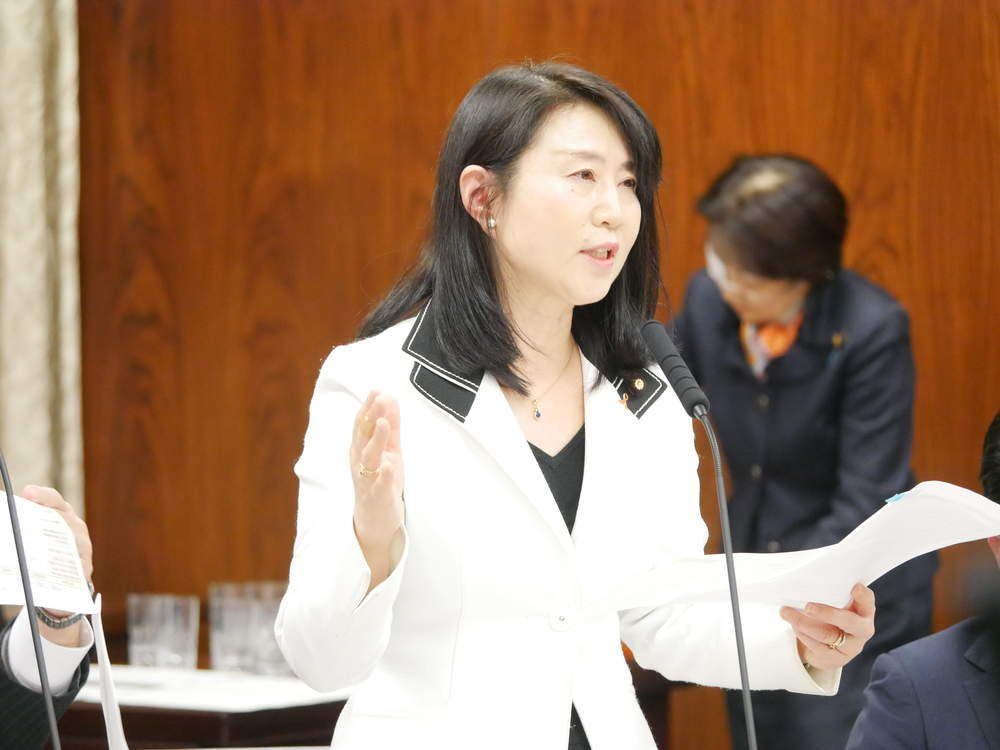 内閣委員会 大臣所信に対する質疑