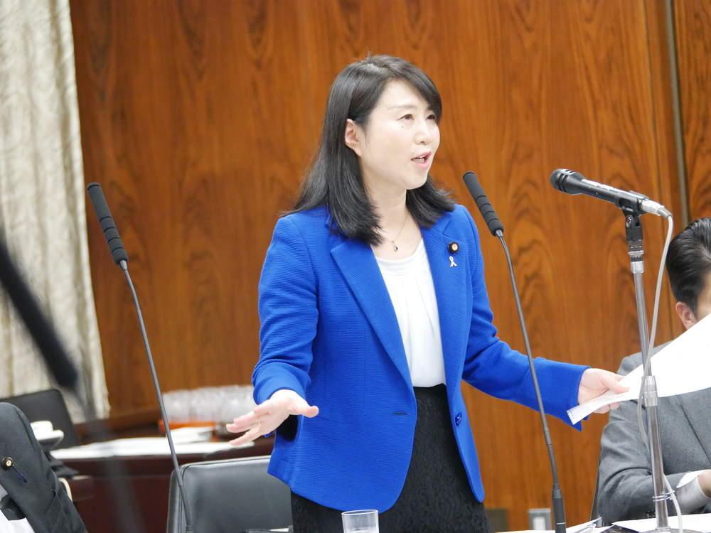 内閣委員会 「給与法改正案」質疑