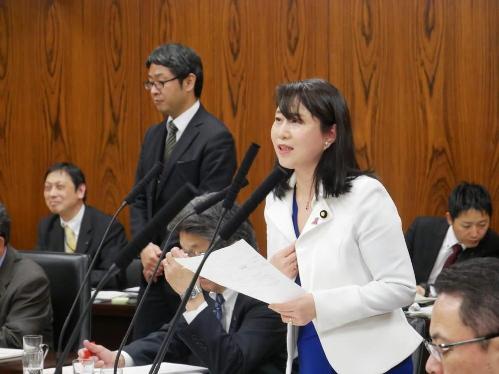 参議院内閣委員会 大臣所信に対する質疑