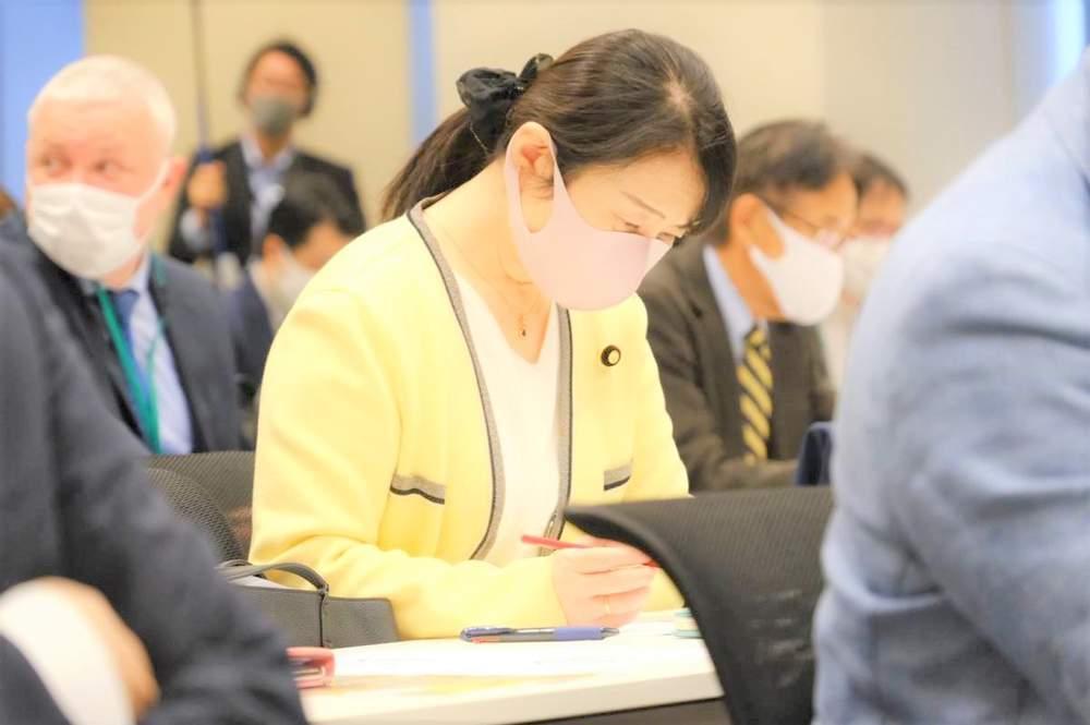 第1回憲法調査会、熊本地協