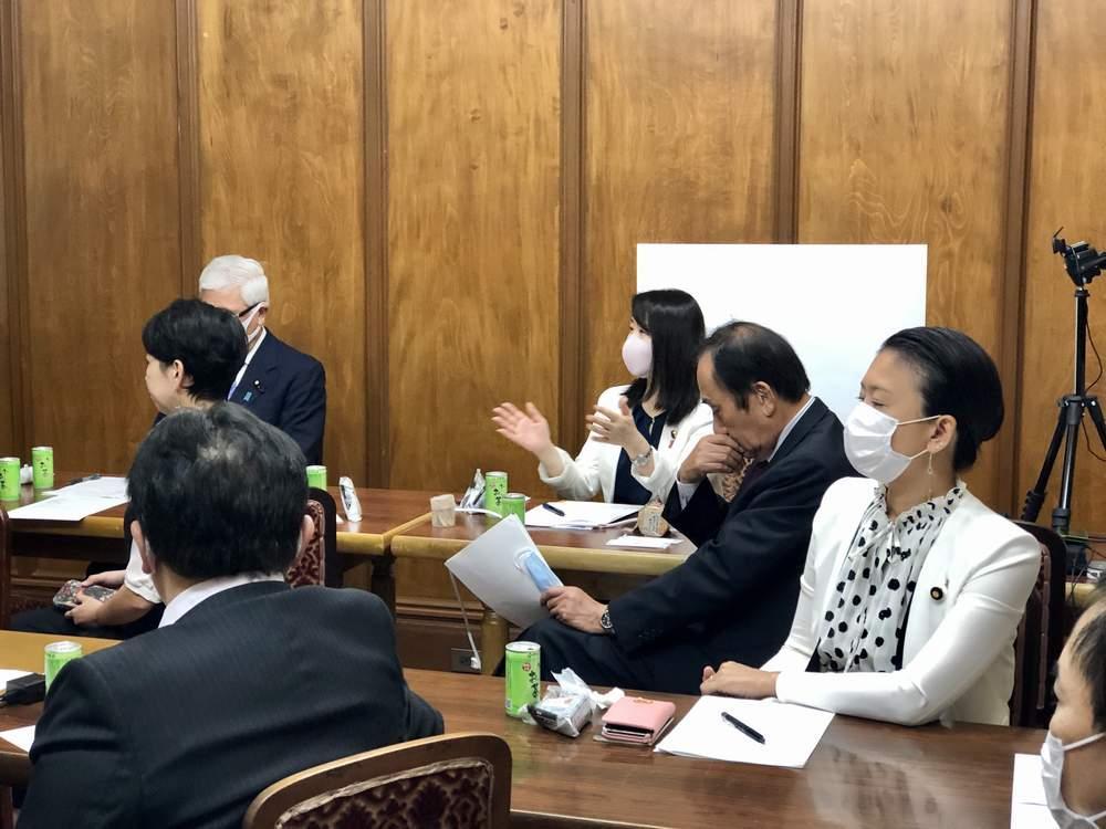国民民主党エネルギー調査会ほか