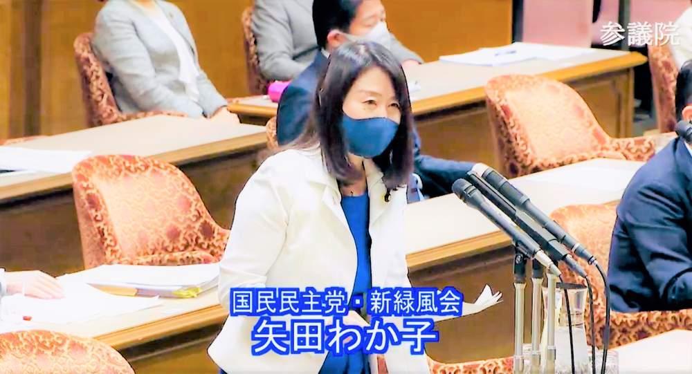 内閣委員会質問、憲法調査会ほか