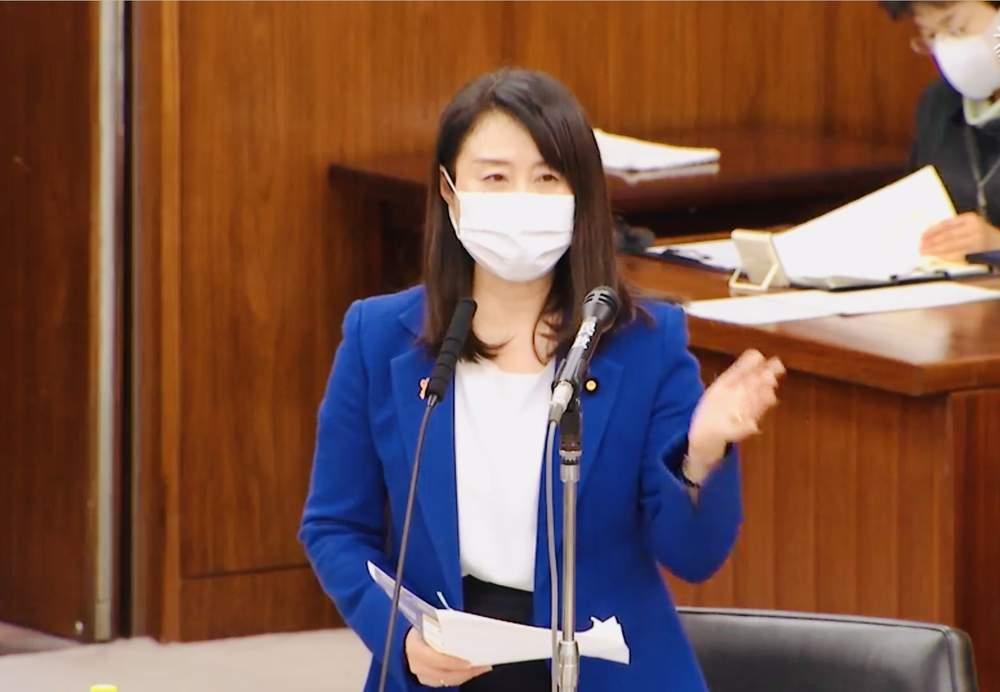 内閣委員会質疑・反対討論、本会議ほか