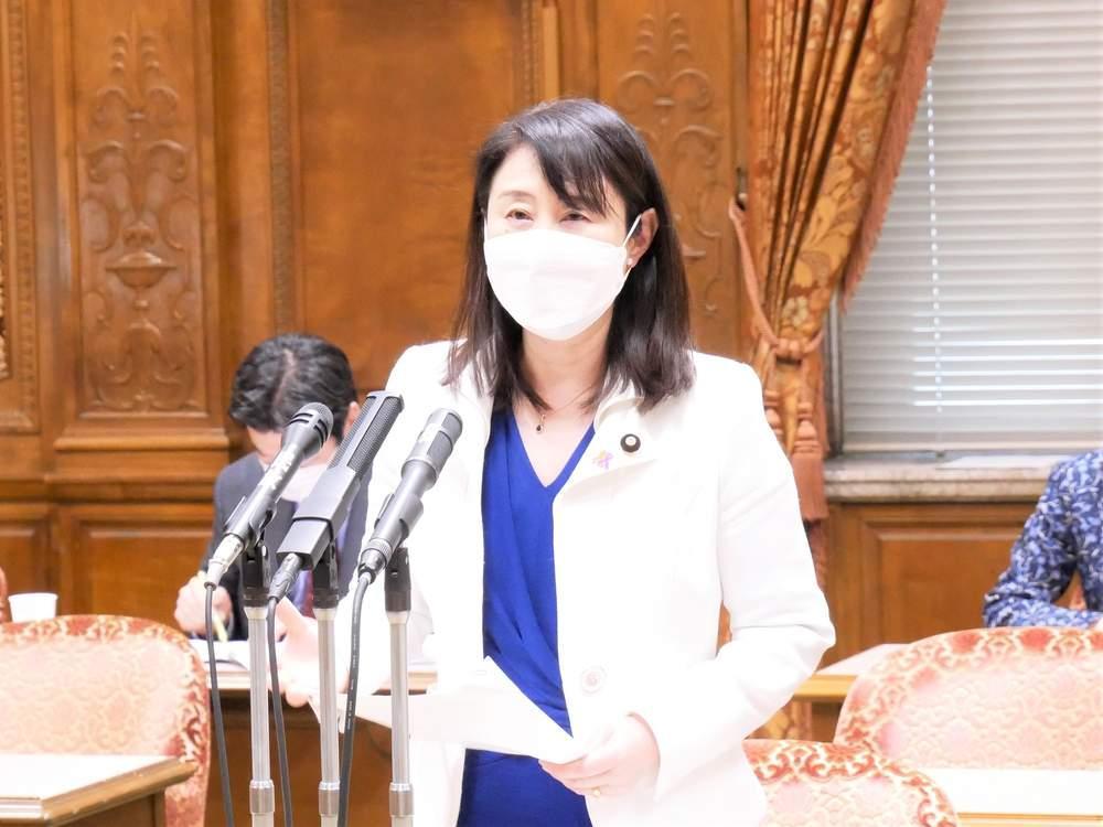 内閣委員会「ストーカー規制法改正案」審議