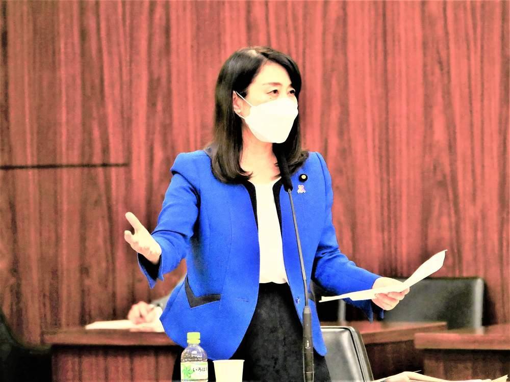 内閣委員会「子ども・子育て支援法及び児童手当法改正案」質疑