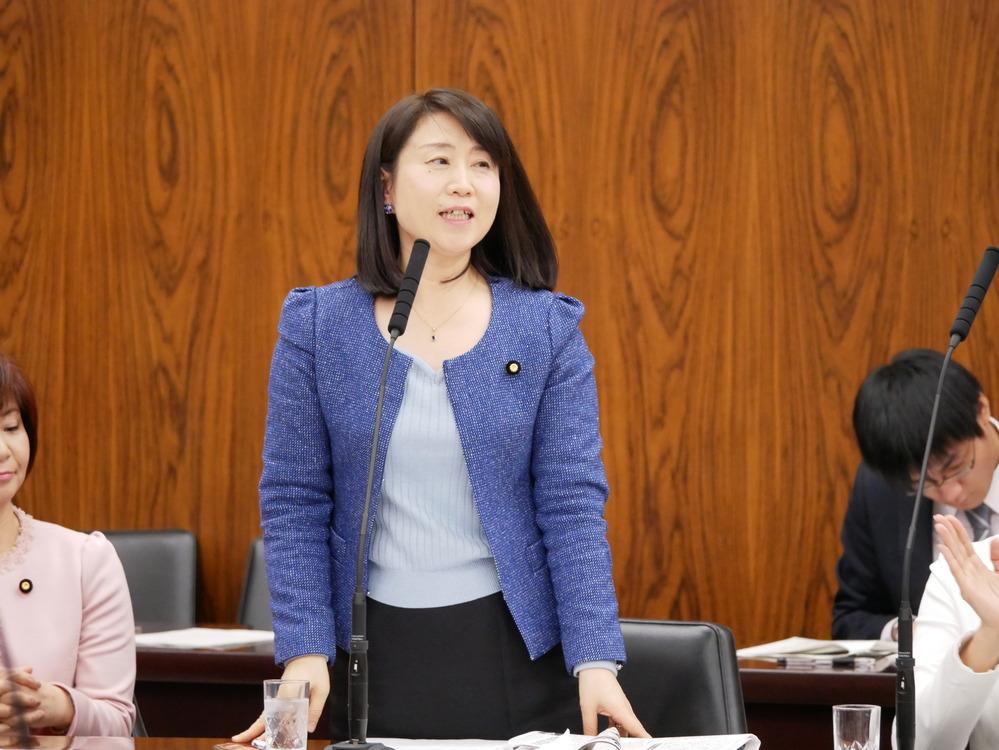 平成29年4月5日(水) 消費者問題に関する特別委員会