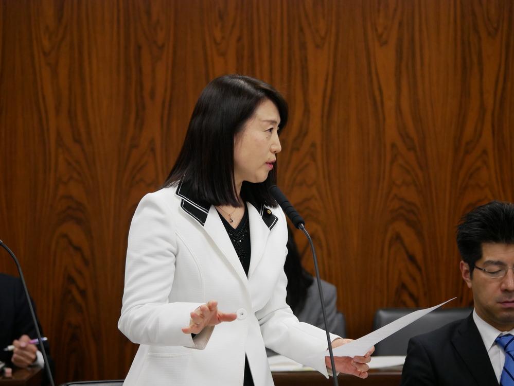 平成29年4月13日(木) 内閣委員会 質問の動画掲載