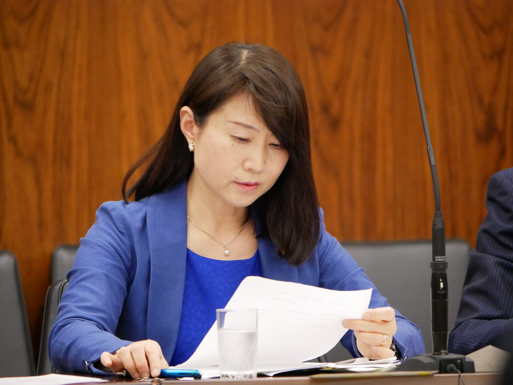 平成29年5月10日(水) 資源エネルギーに関する調査会 質問の動画掲載