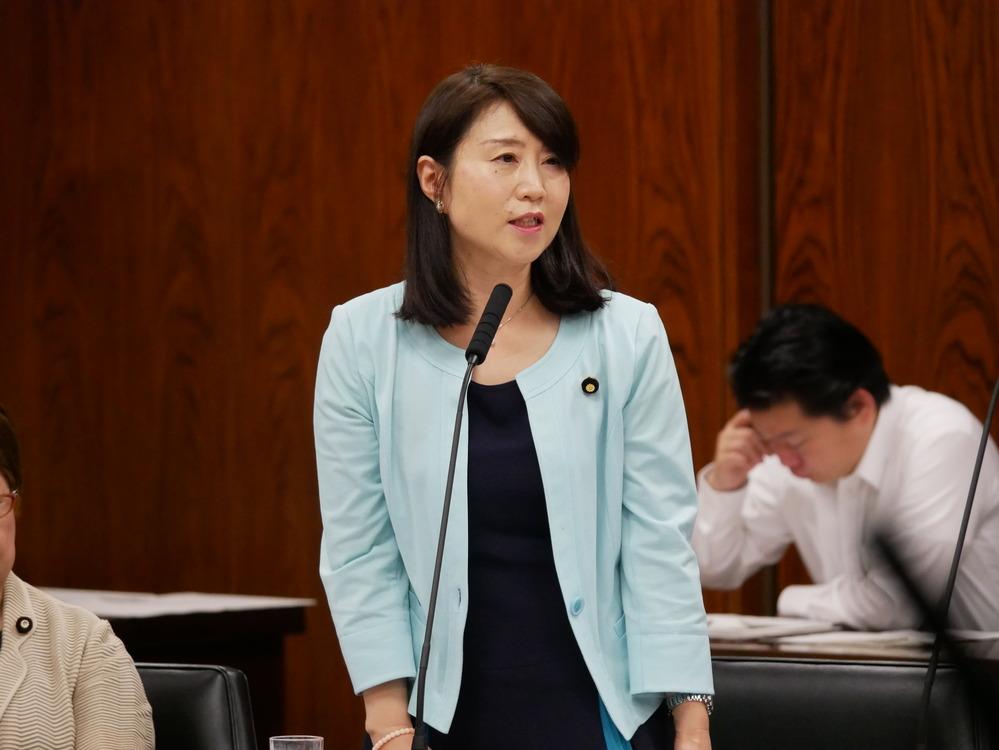 平成29年5月11日(木) 内閣委員会 質問の動画掲載