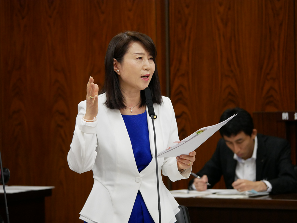 平成29年6月13日(火) 内閣委員会 質問の動画掲載