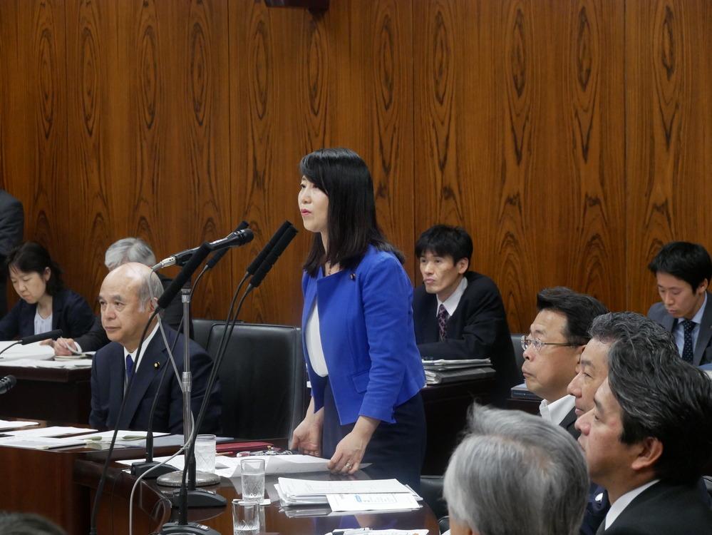 平成30年6月26日(火) 内閣委員会『TPP協定関係整備法改正案』