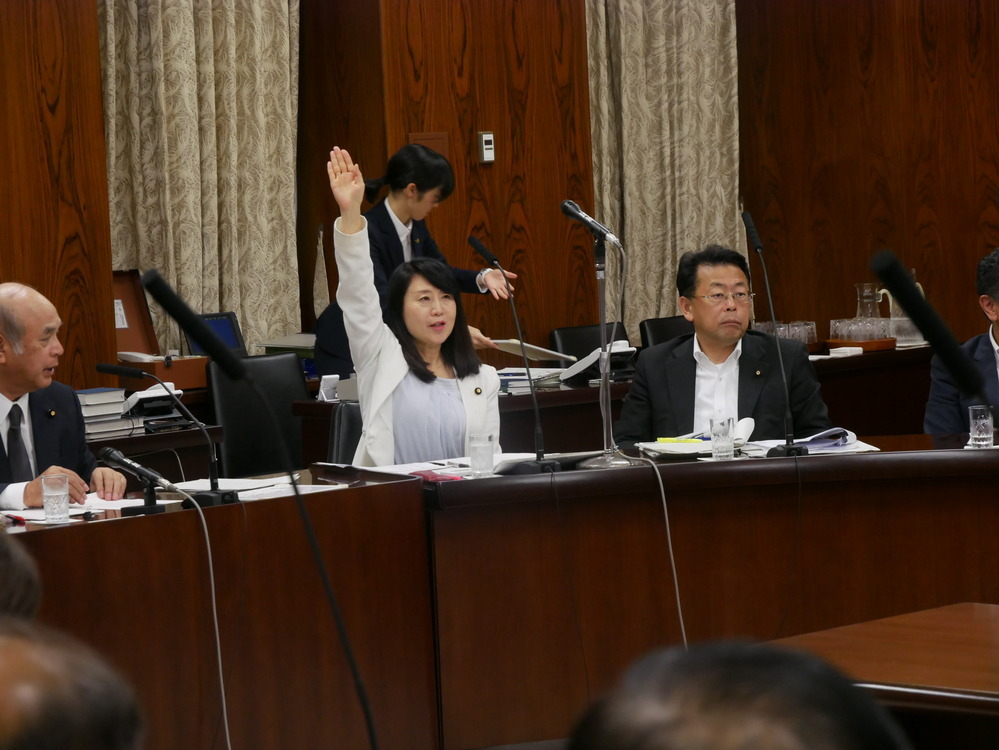 平成30年7月5日(木) 内閣委員会『ギャンブル等依存症対策基本法案』