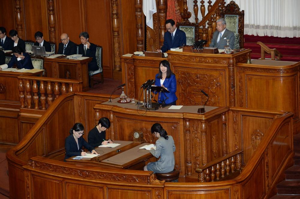 平成30年7月6日(金) 本会議『カジノ含む統合型リゾート(IR)整備法案』