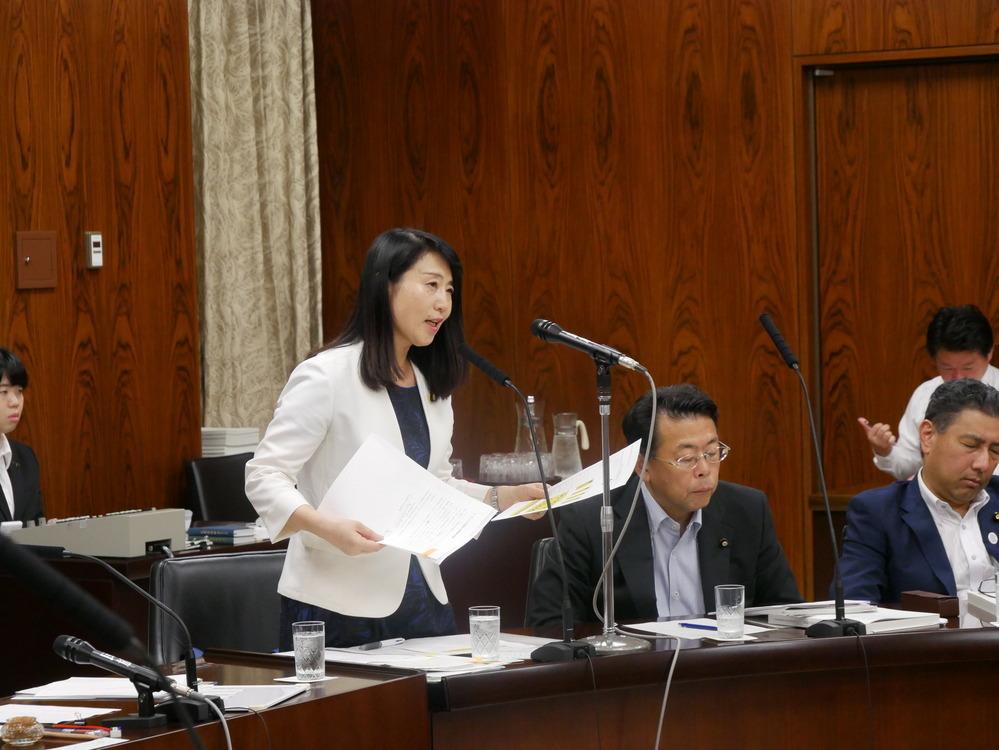 平成30年7月10日(火) 内閣委員会『カジノ含む統合型リゾート(IR)整備法案』