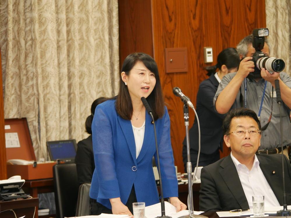 平成30年7月17日(火) 内閣委員会『カジノ含む統合型リゾート(IR)整備法案』