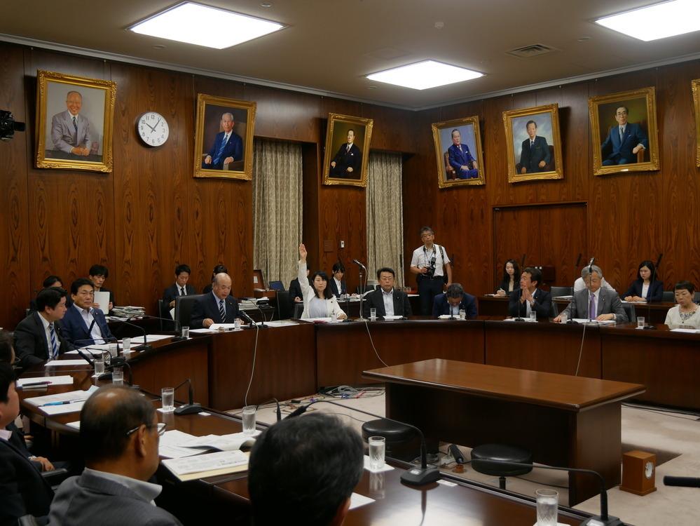 平成30年7月19日(木) 内閣委員会『カジノ含む統合型リゾート(IR)整備法案』