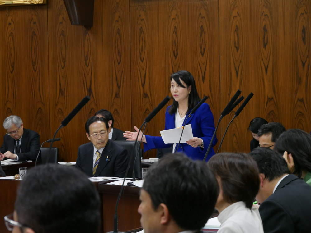 平成30年11月15日(金) 内閣委員会 大臣所信に対する質疑