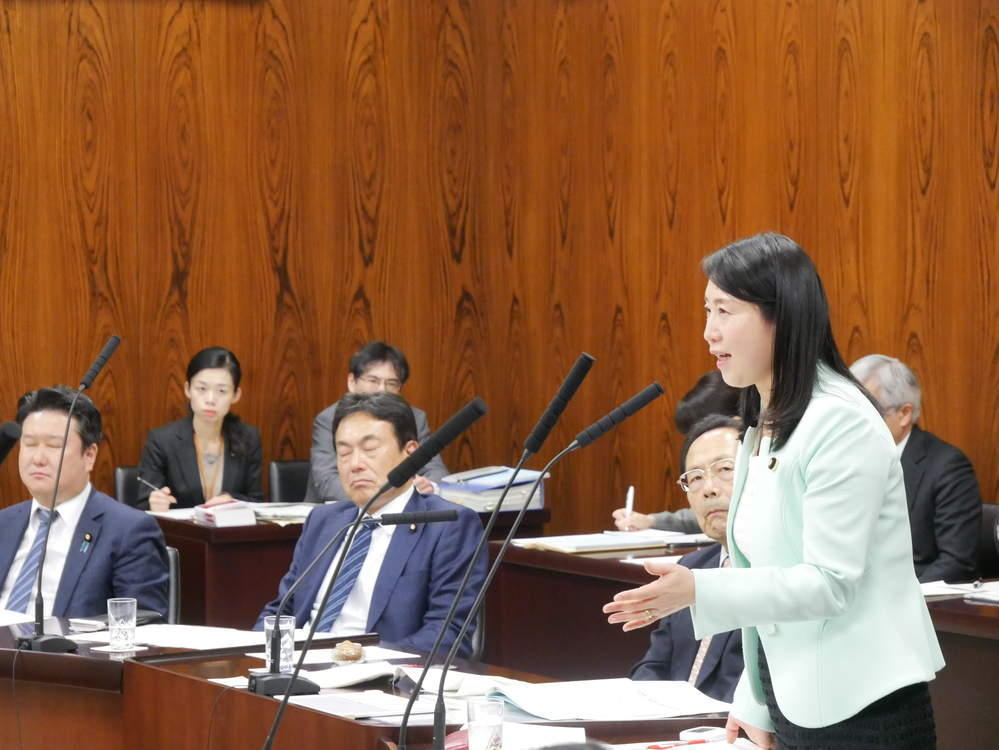 平成30年11月22日(木) 内閣委員会『給与法改正案』