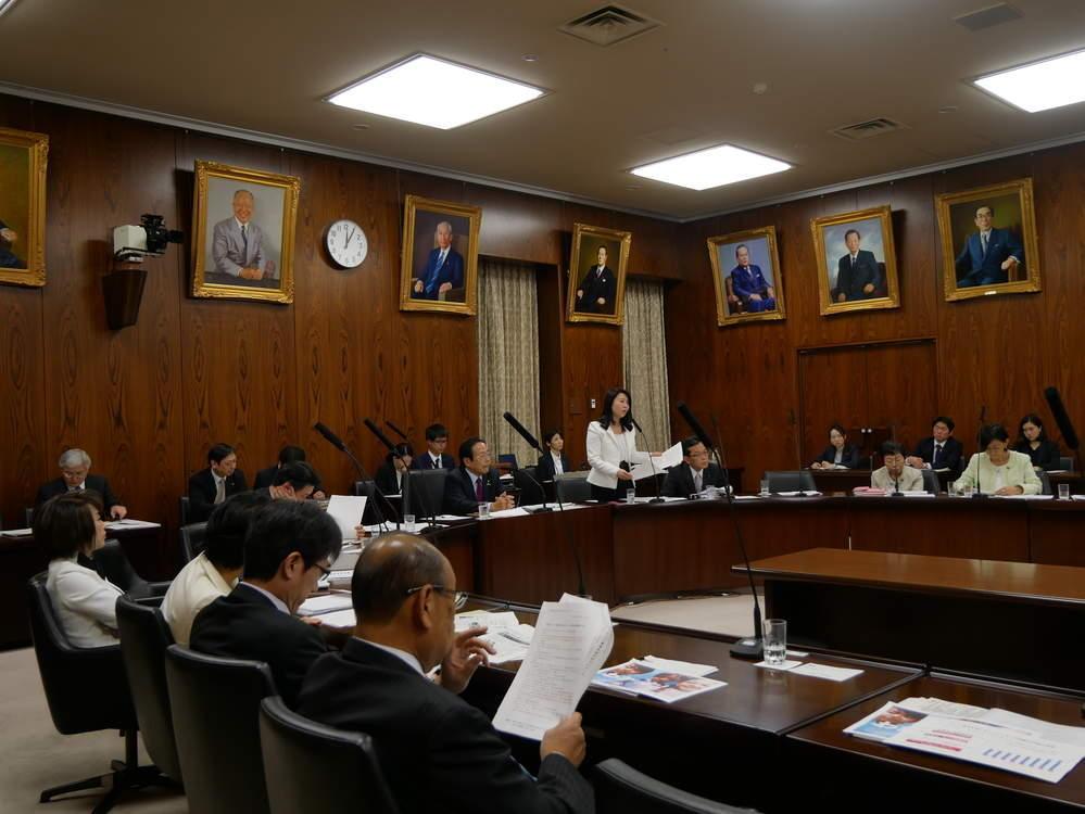 平成30年11月27日(火) 内閣委員会『一般質疑』