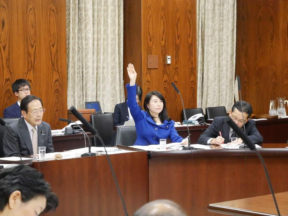 平成30年12月4日(火) 内閣委員会『サイバーセキュリティー法質疑』