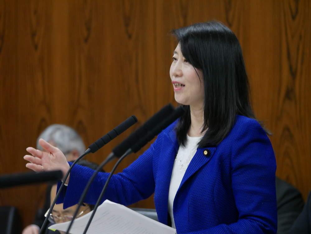 平成30年12月6日(木) 内閣委員会『休日法質疑』
