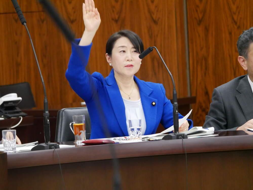 平成31年2月13日(水) 資源エネルギー調査会『気候変動と資源エネルギー』参考人質疑