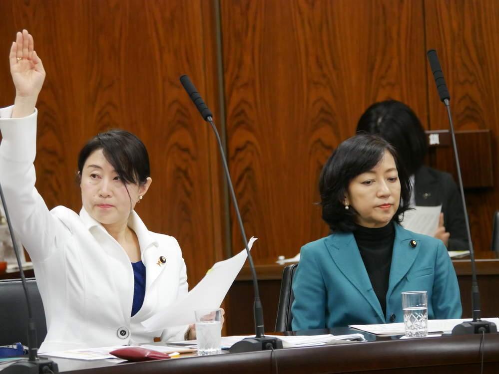 平成31年3月20日(水) 内閣委員会『予算委嘱審査』