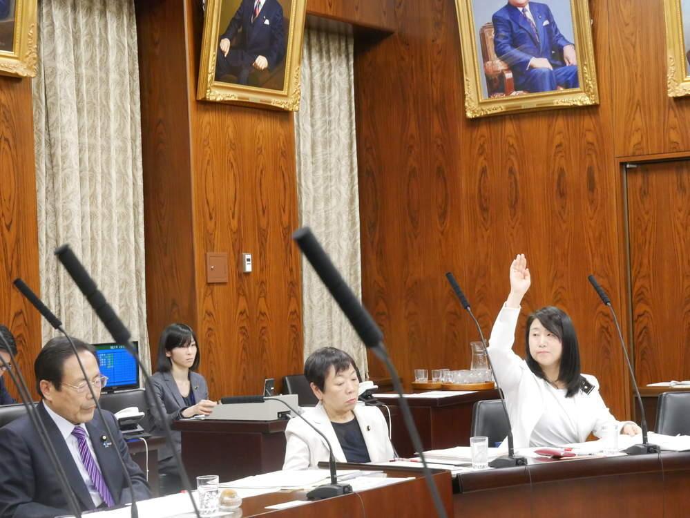 平成31年3月28日(木) 内閣委員会『警察法改正案』の質疑と附帯決議