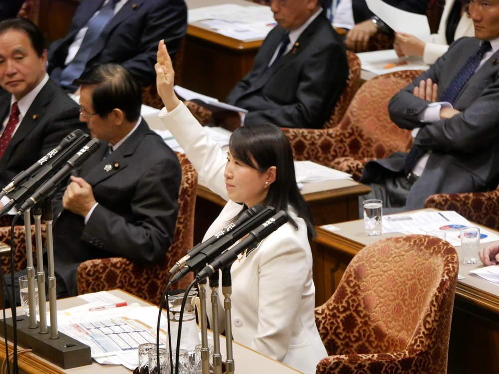 平成31年4月10日(水) 東日本大震災復興特別委員会「大臣所信に対する質疑」