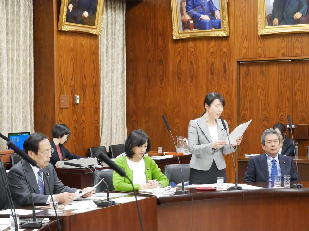 平成31年4月11日(木) 内閣委員会「道路交通法改正案」修正案と付帯決議