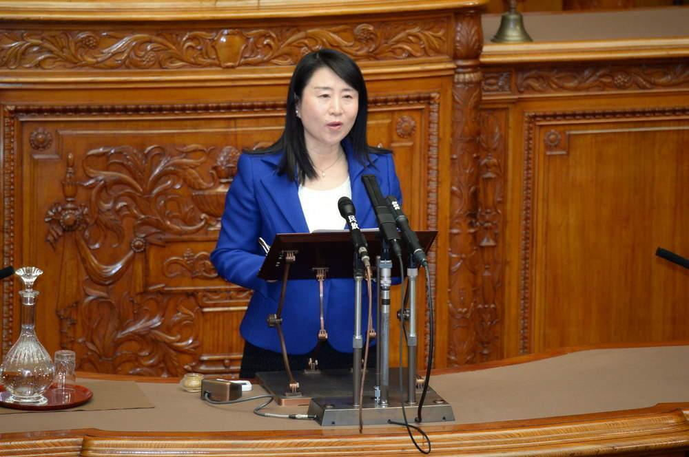 平成31年4月12日(金) 参議院本会議「子ども・子育て支援法改正案」代表質問