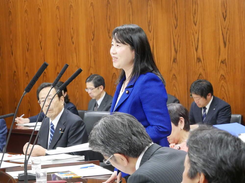 平成31年4月23日(火) 内閣委員会「子ども・子育て支援法」質疑