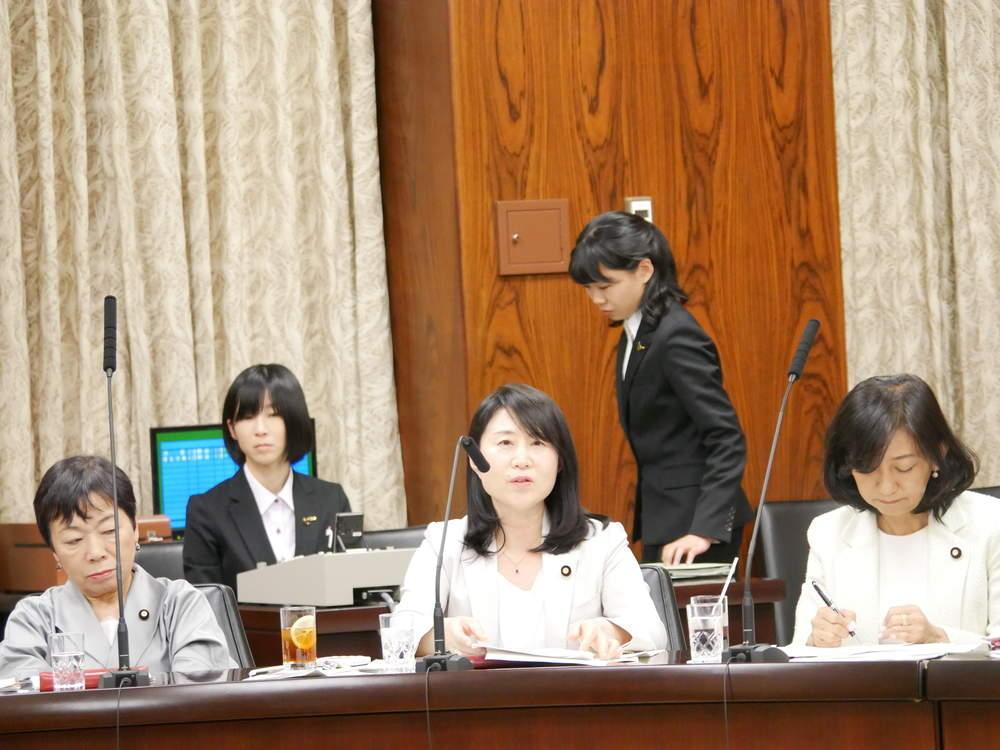 令和元年5月7日(火) 内閣委員会「子ども・子育て支援法改正案」参考人質疑