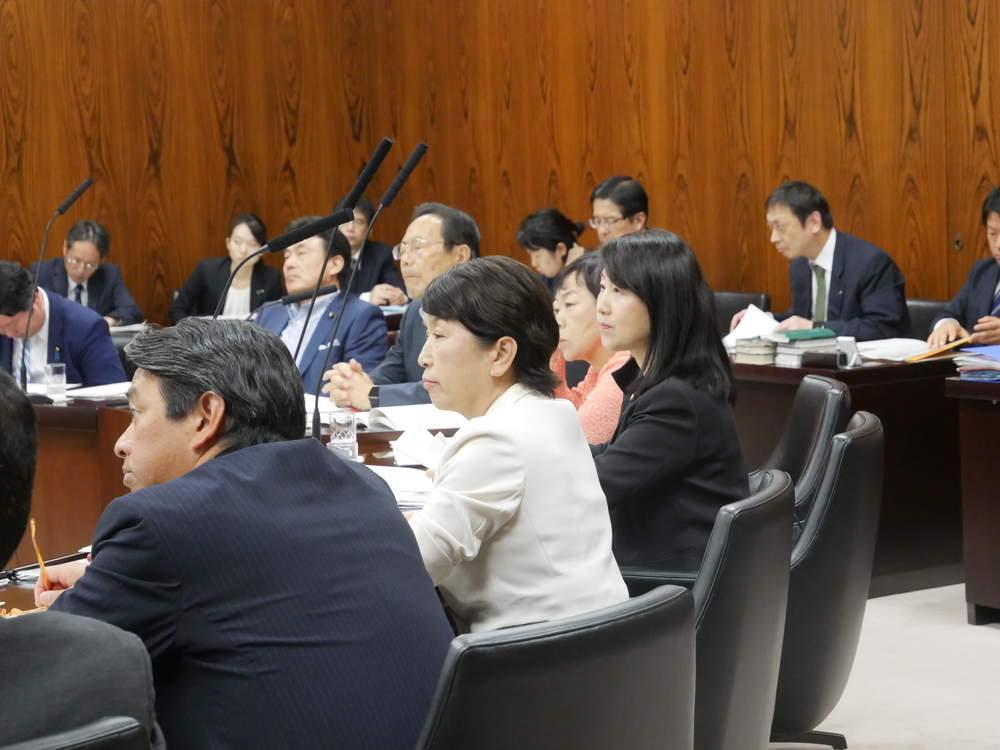 令和元年5月16日(木) 内閣委員会「ドローン規制法案 附帯決議」読み上げ