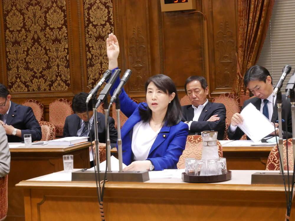 令和元年6月3日(月) 決算委員会「准総括」