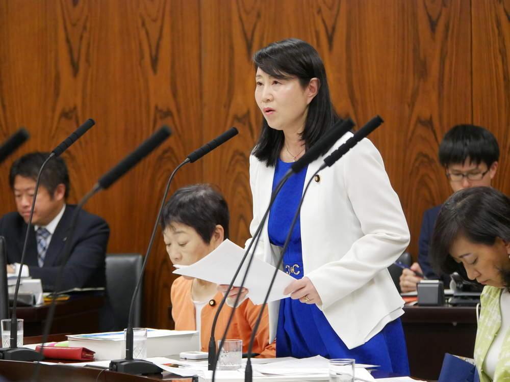 令和元年6月4日(火) 内閣委員会「一般質疑」
