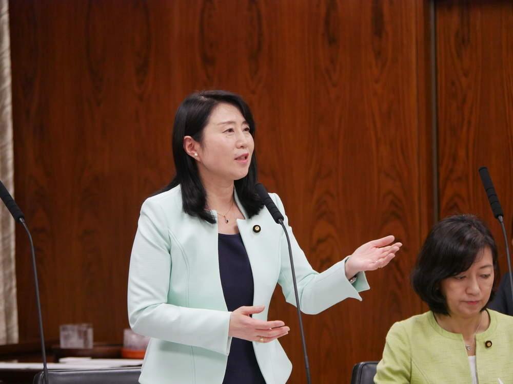 令和元年6月11日(火) 内閣委員会(一般:企業主導型保育・子ども貧困対策)質疑
