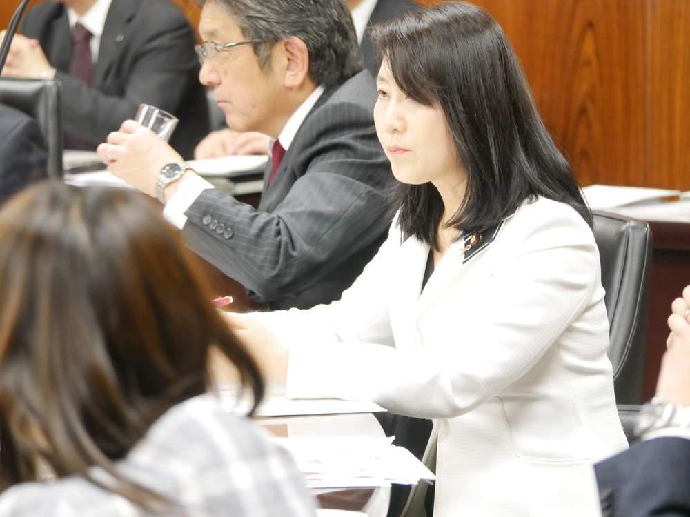 令和元年11月7日(木) 内閣委員会 大臣所信に対する質疑
