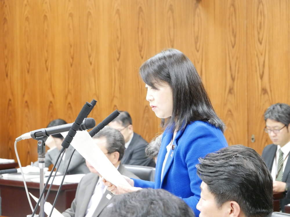 令和元年11月14日(木)内閣委員会 国家公務員の「給与法改正案」の質疑と付帯決議