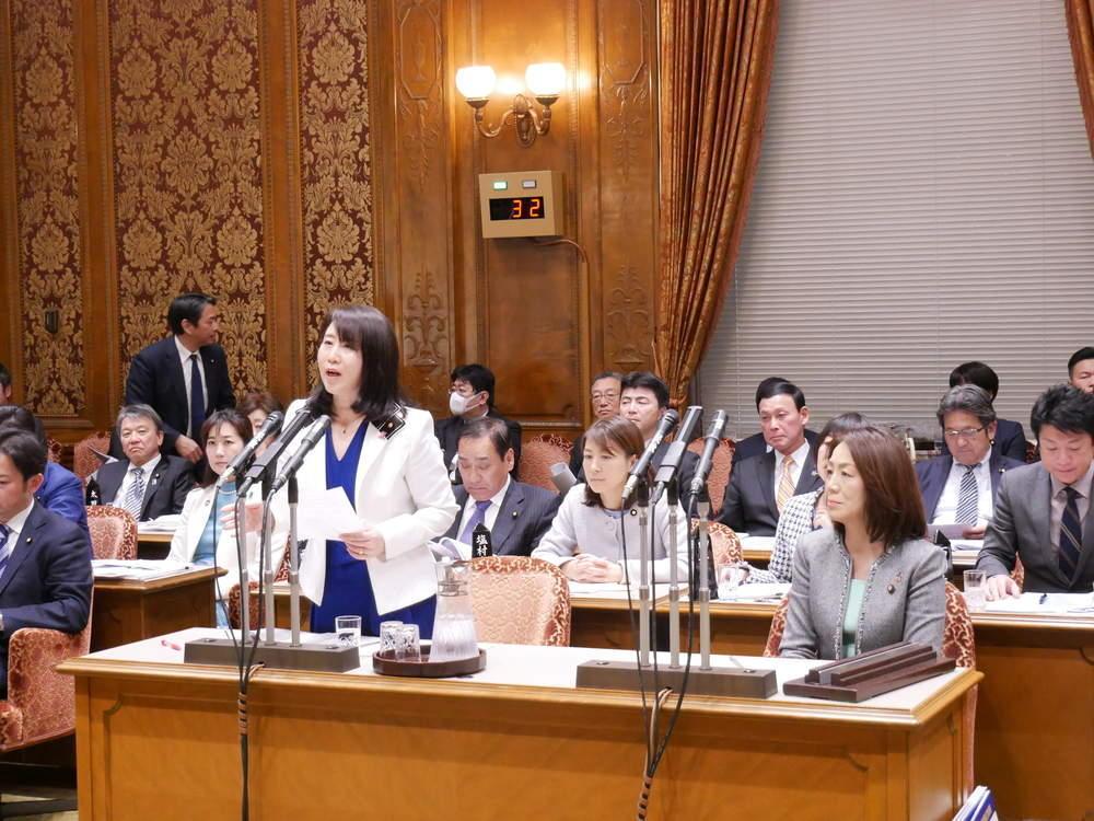 令和2年1月31日(金) 参議院「予算委員会」集中審議
