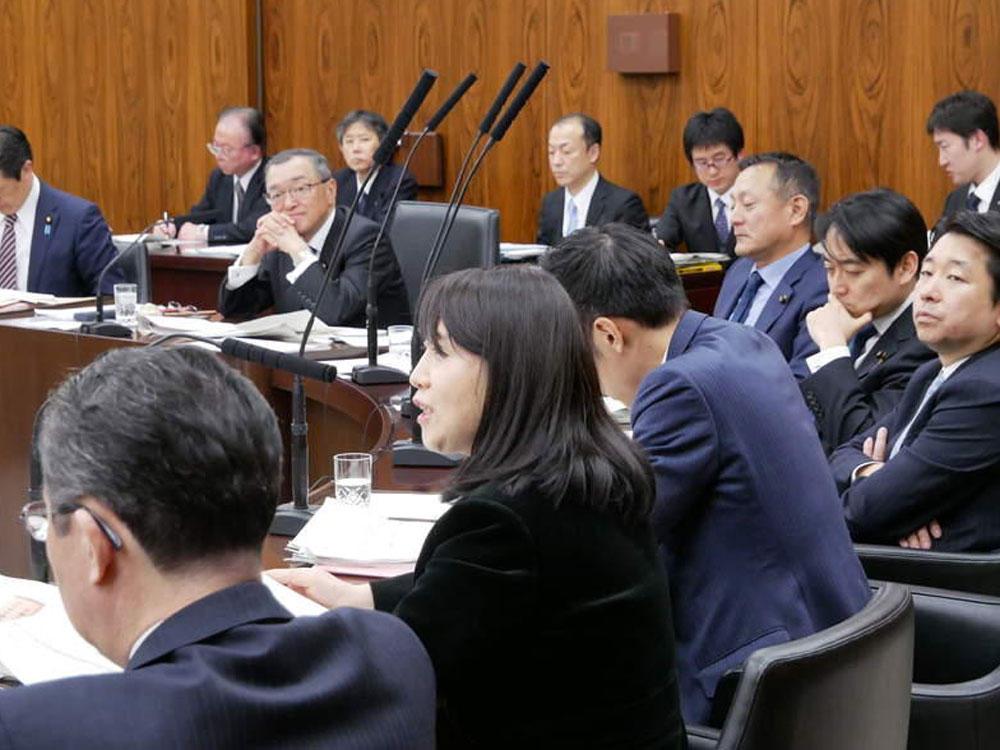 令和2年2月12日(水) 「資源エネルギー調査会」参考人質疑